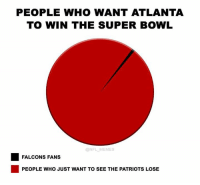 So accurate: PEOPLE WHO WANT ATLANTA  TO WIN THE SUPER BOWL  @NFL MEMES  FALCONS FANS  PEOPLE WHO JUST WANT TO SEE THE PATRIOTS LOSE So accurate