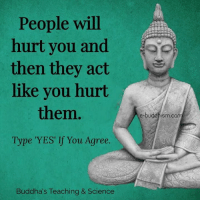 Buddhism: People will  hurt you and  then they act  like you hurt  them  Type 'YES' If You Agree.  Buddha's Teaching & Science  e-buddhism,co