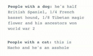 Memes, Flower, and Magic: People with a dog: he's half  British Spaniel, 1/4 French  basset hound, 1/8 Tibetan magic  flower and his ancestors won  world war 2  People with a cat: this is  Nacho and he's an asshole