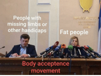 Mainstream media and society be like  via /r/memes http://bit.ly/2CVnSye: People with  missing limbs or  other handicaps  Fat people  Body acceptence  movement Mainstream media and society be like  via /r/memes http://bit.ly/2CVnSye