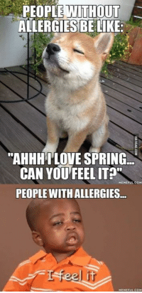 """Saw something funny on Facebook last night for the first time before I found it here. http://9gag.com/gag/adNrK7V?ref=fbp: PEOPLE WITHOUT  ALLERGIES BE LIKE  """"AHHHILOVE SPRING  CAN YOU FEEL  MEME FULCOM  PEOPLE WITH ALLERGIES  MEMEFUL COM Saw something funny on Facebook last night for the first time before I found it here. http://9gag.com/gag/adNrK7V?ref=fbp"""
