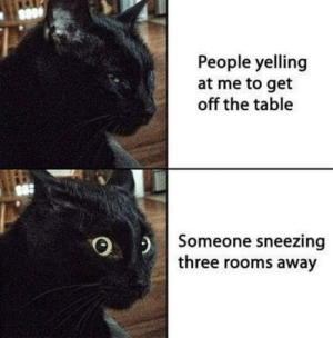 Accurate: People yelling  at me to get  off the table  $8:  2 Someone sneezing  three rooms away Accurate