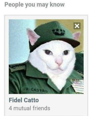 What witchery is this: People you may know  R CASTRO  Fidel Catto  4 mutual friends What witchery is this