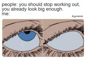 You should stop working out, you already look big enough.  More motivation: https://www.gymaholic.co  #fitness #motivation #meme #gymaholic: people: you should stop working out,  you already look big enough  me:  @gymaholic You should stop working out, you already look big enough.  More motivation: https://www.gymaholic.co  #fitness #motivation #meme #gymaholic