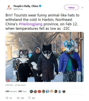 Funny, China, and Animal: People's Daily, China  @PDChina  Follow  Brrr! Tourists wear funny animal-like hats to  withstand the cold in Harbin, Northeast  China's #Heilongjang province, on Feb 12,  when temperatures fell as low as -22C  IC  5:34 PM - 14 Feb 2019  139 Retweets 265 Likes  23 tl 139 265