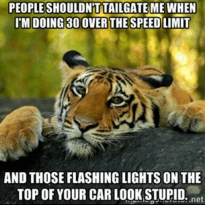 Seriously dude, chill the fuck out!: PEOPLESHOULDN T TAILGATE MEWHEN  IM DOING 30 OVERTHE SPEED LIMIT  AND THOSE FLASHING LIGHTS ON THE  TOP OF YOUR CAR LOOK STUPID. net Seriously dude, chill the fuck out!