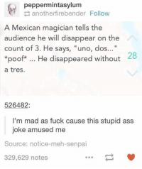 """Stupidity: peppermintasylum  anotherfirebender Follow  A Mexican magician tells the  audience he will disappear on the  count of 3. He says, """"uno, dos  28  *poof* He disappeared without  a tres.  526482  I'm mad as fuck cause this stupid ass  joke amused me  Source: notice-meh-senpai  329,629 notes"""
