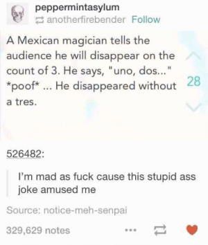 "meh: peppermintasylum  anotherfirebender Follow  A Mexican magician tells the  audience he will disappear on the  count of 3. He says, ""uno, dos...""  *poof* He disappeared without 28  a tres.  526482:  I'm mad as fuck cause this stupid ass  joke amused me  Source: notice-meh-senpai  329,629 notes"