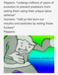 """Evolution, Fuck, and Hell: Peppers: """"undergo millions of years of  evolution to prevent predators from  eating them using their unique spice  defense*  Humans: """"Hell ya lets burn our  mouths and assholes by eating these  fuckers""""  Peppers:  excuse me what the fuck"""