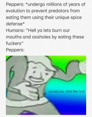 "Humans vs Peppers by bruggekiller MORE MEMES: Peppers: ""undergo millions of years of  evolution to prevent predators from  eating them using their unique spice  defense*  Humans: ""Hell ya lets burn our  mouths and assholes by eating these  fuckers""  Peppers:  excuse me what the fuck Humans vs Peppers by bruggekiller MORE MEMES"