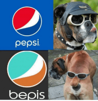 what a boii: pepsi  bepis what a boii