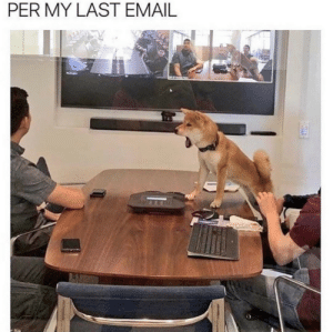 Email, MeIRL, and Last: PER MY LAST EMAIL meirl