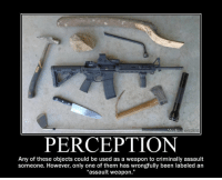 """Memes, Only One, and Perception: PERCEPTION  Any of these objects could be used as a weapon to criminally assault  someone. However, only one of them has wrongfully been labeled an  """"assault weapon."""""""