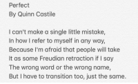 Dad, Family, and Awkward: Perfect  By Quinn Castile  I can't make a single little mistake,  In how I refer to myself in any way,  Because I'm afraid that people will take  It as some Freudian retraction if I say  The wrong word or the wrong name  But I have to transition too, just the same.