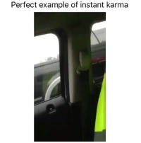 """Memes, 🤖, and Examples Ofs: Perfect example of instant karma Lmaoooo type """"haha"""" letter by letter in order to win free shoutouts! 😍😍😍😍"""