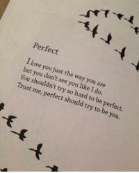 Love, I Love You, and You: Perfect  I love you just the way you are  but you don't see you like I do.  You shouldn't try so hard to be perfect  Trust me, perfect should try to be you.