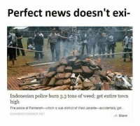 News, Police, and Weed: Perfect news doesn't exi-  Indonesian police burn 3.3 tons of weed; get entire town  high  The police of Palmerah-which is sub-district of West Jakarta-accidentally got  DANGEROUSMINDS NET  Share 3.3 tons of weed in a small town? Impressive!