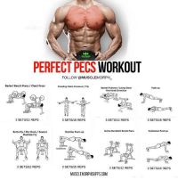 RT @FactofWorkout: Doubletap for perfect pecs. https://t.co/MiVwhhBwCL: PERFECT PECS WORKOUT  FOLLOW @MUSCLEMORPH  Barbell Bench Press/Chest Press  Standing Cable Crossover Fly  Barbell Pullover/Lying Chest  Overhead Extenslon  Push-up  3 SETS/12 REPS  3 SETS/15 REPS  3 SETS/12 REPS  3 SETS/15 REPS  Incline Dumbbell Bench Press  Spiderman Push-up  Butterfly/ Pec Deck/Seated  Machine Fly  Decline Push-up  3 SETS/12 REPS  3 SETS/15 REPS  3 SETS/12 REPS  3 SETS/15 REPS  MUSCLEMORPHSUPPS.COM RT @FactofWorkout: Doubletap for perfect pecs. https://t.co/MiVwhhBwCL