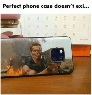 54 Of Today's Best Pics And Memes: Perfect phone case doesn't exi.  14  15  16  19 20 2 23 24  2526 27 28 29 30 54 Of Today's Best Pics And Memes
