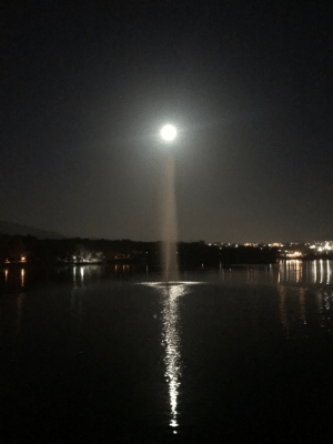 Perfect time and position where moon and water meet. Original pic without filters: Perfect time and position where moon and water meet. Original pic without filters