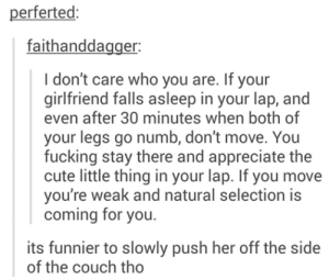 Cute, Fucking, and Omg: perferted  faithanddagger:  I don't care who you are. If your  girlfriend falls asleep in your lap, and  even after 30 minutes when both of  your legs go numb, don't move. You  fucking stay there and appreciate the  cute little thing in your lap. If you move  you're weak and natural selection is  coming for you  its funnier to slowly push her off the side  of the couch tho On or side?omg-humor.tumblr.com
