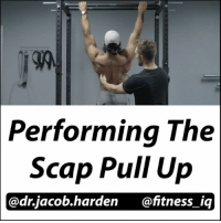 BUILD A BETTER PULL UP Here's the follow up yesterday's post on how to initiate the pull up that over 300 of you asked for! So I brought in @fitness_iq to demo for me while I talked you through it. The best way train and strengthen the first part of the pull up is through the Scap Pull Up. In this exercise, we really isolate the scapular depression and retraction motion, a commonly weak area for a lot of people. Here's how you do it... 🔼Grab the bar just outside shoulder width. Narrower will bias depression while wider will bias retraction. 🔼Start in the dead hang fully relaxed. 🔼Keeping the arms straight pull your torso up. I cue to pull your ears away from your shoulders. 🔼Lower back down under control. You can add a slight pause at the top for extra difficulty. Then repeat. If you have trouble with this, you can tie a band to the top of the bar and put it under your feet for assistance. Once you get it right, your lats will fire better, your shoulder health will improve, and your pulls ups will really start progressing. Tag a friend who needs to fix their pull ups and share the wealth! MyodetoxOrlando Myodetox Fitness_IQ: Performing The  Scap Pull Up  @drjacob harden @fitness iq BUILD A BETTER PULL UP Here's the follow up yesterday's post on how to initiate the pull up that over 300 of you asked for! So I brought in @fitness_iq to demo for me while I talked you through it. The best way train and strengthen the first part of the pull up is through the Scap Pull Up. In this exercise, we really isolate the scapular depression and retraction motion, a commonly weak area for a lot of people. Here's how you do it... 🔼Grab the bar just outside shoulder width. Narrower will bias depression while wider will bias retraction. 🔼Start in the dead hang fully relaxed. 🔼Keeping the arms straight pull your torso up. I cue to pull your ears away from your shoulders. 🔼Lower back down under control. You can add a slight pause at the top for extra difficulty. Then repeat. If you have trouble with this, you can tie a band to the top of the bar and put it under your feet for assistance. Once you get it right, your lats will fire better, your shoulder health will improve, and your pulls ups will really start progressing. Tag a friend who needs to fix their pull ups and share the wealth! MyodetoxOrlando Myodetox Fitness_IQ