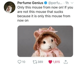 only this mouse: Perfume Genius @perfu... 1hv  Only this mouse from now on! If you  are not this mouse that sucks  because it is only this mouse from  now on  910 389 1,815 only this mouse