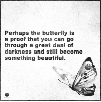 Higher Perspective via Heart Centered Rebalancing: Perhaps the butterfly is  a proof that you can go  through a great deal of  darkness and still become  something beautifui. Higher Perspective via Heart Centered Rebalancing