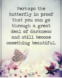 Perhaps the butterfly is proof that you can go through a great deal of darkness and still become something beautiful. positiveenergyplus: Perhaps the  butterfly is proof  that you can go  through a great  deal of darkness  and still become  something beautiful  POSITIVE Perhaps the butterfly is proof that you can go through a great deal of darkness and still become something beautiful. positiveenergyplus