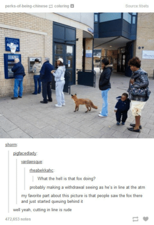 Fox at the ATMomg-humor.tumblr.com: perks-of-being-chinese coluring D  Source:tibets  shorm:  pigfacedlady:  vardaesque:  rheabekkahc:  | What the hell is that fox doing?  probably making a withdrawal seeing as he's in line at the atm  my favorite part about this picture is that people saw the fox there  and just started queuing behind it  well yeah, cutting in line is rude  472,653 notes Fox at the ATMomg-humor.tumblr.com