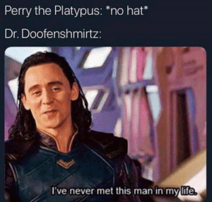 platypus: Perry the Platypus: no hat  Dr. Doofenshmirtz:  I've never met this man in my life