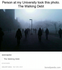 the walking: Person at my University took this photo.  The Walking Debt  wannajoke  The Walking Debt  wannajoke  320,257 notes Mar 10th, 2017  boredpanda.com