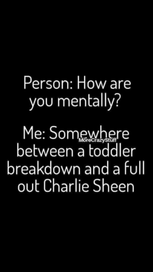 Hiatus: Person: How are  you mentally?  Me: Somewhere  between a toddler  breakdown and a fll  out Charlie Sheen  'MoreCrazyStuff Hiatus