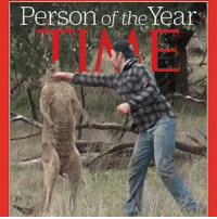 Memes, 🤖, and Kangaroo: Person of the Year In my opinion he is the person off the year home boy damn near knock out the kangaroos lol with that punch lol