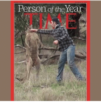 Person of the Year Punching a kangaroo. Add it to the bucket list.