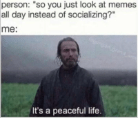 """Memes All: person:  """"so you just look at memes  all day instead of socializing?""""  me:  It's a peaceful life."""