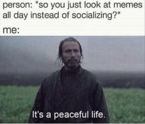 """Relatable: person: """"so you just look at memes  all day instead of socializing?""""  me:  It's a peaceful life Relatable"""
