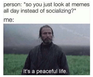 """meirl by Hahahahahahahahaha55 MORE MEMES: person: """"so you just look at memes  all day instead of socializing?""""  me:  It's a peaceful life. meirl by Hahahahahahahahaha55 MORE MEMES"""