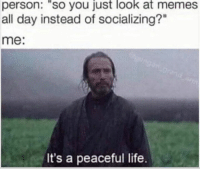 """Memes All: person: so you ust look at memes  all day instead of socializing?""""  me:  It's a peaceful life."""