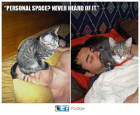 """Heardly: """"PERSONAL SPACE? NEVER HEARD OFIT  Postize"""