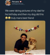 Best Friend, Birthday, and Dad: Peruana  @Alejandraaa_  We were taking pictures of my dad for  his birthday and then my dog did this  truly mans best friend