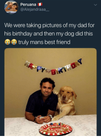 <p>Truly a man's best friend</p>: PeruanaI  @Alejandraaa_  We were taking pictures of my dad for  his birthday and then my dog did this  truly mans best friend <p>Truly a man's best friend</p>