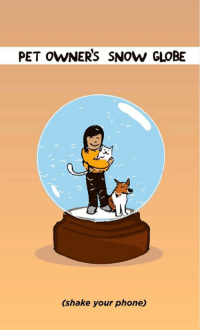 Memes, Phone, and Pets: PET OWNERS SNOw GLOBE  (shake your phone) totally me.