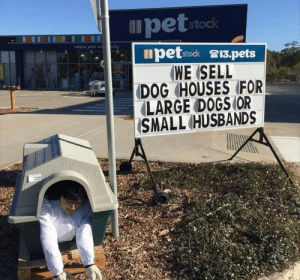 husbands: pet stock  where pets ar  petstock 13.pets  WE ISELL  DOG HOUSES FOR  LARGE DOGS (OR  (SMALL (HUSBANDS