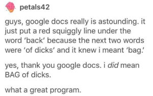 Google docs: petals42  guys, google docs really is astounding. it  just put a red squiggly line under the  word 'back' because the next two words  were 'of dicks' and it knew i meant 'bag!  yes, thank you google docs. i did mean  BAG of dicks.  what a great program Google docs