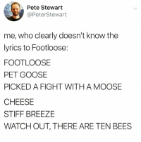 Funny, Watch Out, and Weird: Pete Stewart  @Peter5tewart  me, who clearly doesn't know the  lyrics to Footloose:  FOOTLOOSE  PET GOOSE  PICKED A FIGHT WITH A MOOSE  CHEESE  STIFF BREEZE  WATCH OUT, THERE ARE TEN BEES Is it weird that I like these more than the original lyrics @_theblessedone 🤔😂 TwitterCreds: Peter5tewart