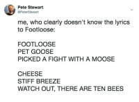 Meirl: Pete Stewart  @Peter5tewart  me, who clearly doesn't know the lyrics  to Footloose:  FOOTLOOSE  PET GOOSE  PICKED A FIGHT WITH A MOOSE  CHEESE  STIFF BREEZE  WATCH OUT, THERE ARE TEN BEES Meirl