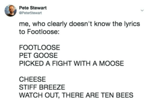 Meirl by xDictate MORE MEMES: Pete Stewart  @Peter5tewart  me, who clearly doesn't know the lyrics  to Footloose:  FOOTLOOSE  PET GOOSE  PICKED A FIGHT WITH A MOOSE  CHEESE  STIFF BREEZE  WATCH OUT, THERE ARE TEN BEES Meirl by xDictate MORE MEMES