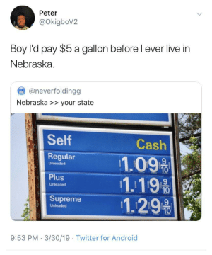 Android, Supreme, and Twitter: Peter  OkigboV2  Boy l'd pay $5 a gallon before l ever live in  Nebraska  @neverfoldingg  Nebraska >> your state  Self  Regular 11.09%  Cash  Unleaded  1.19  Unleaded  Supreme 1.29%  Unleaded  10  9:53 PM 3/30/19  Twitter for Android Everywhere else  Nebraska