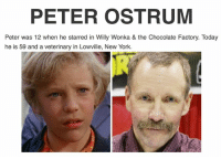 PETER OSTRUM  Peter was 12 when he starred in Willy Wonka & the Chocolate Factory. Today  he is 59 and a veterinary in Lowville, New York. Just something new to know